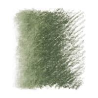 Пастель масляная Classico 296 зеленый земляной Maimeri Италия шт (+1389)