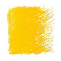 Пастель масляная Classico 116 желтый основной Maimeri Италия шт (+1182)