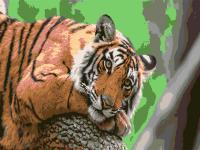 """Картина по номерам artmag 30*40 см """"Величественный тигр"""" схема+краски+кисти К009 шт (+05146)"""